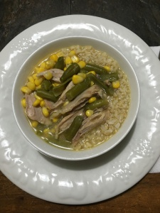 chicken soup - meat only with brown rice