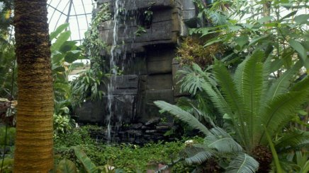 Waterfall at Buffalo Botanical Gardens