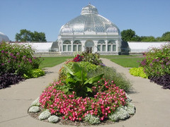 Buffalo_and_Erie_County_Botanical_Gardens_005_medium