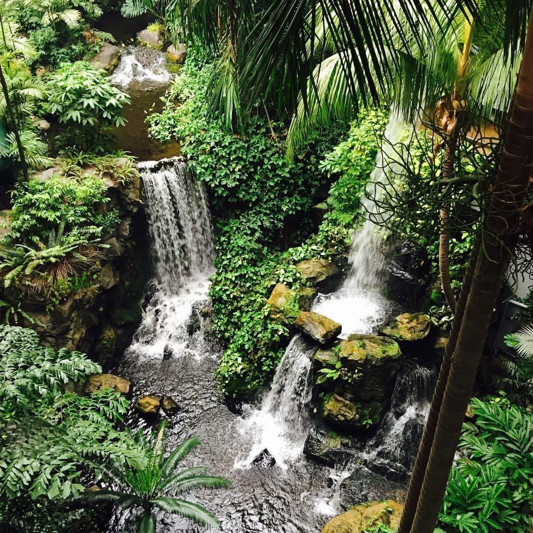 1 Nov 2015 Buffalo Botanical Gardens Between The Dashes
